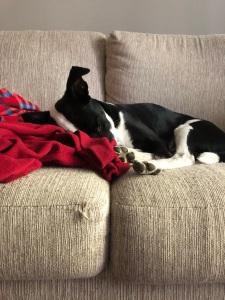 winnie sleeping